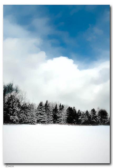 Juste l'hiver tout blanc par crifo CC-BY-NC-ND Source Flickr