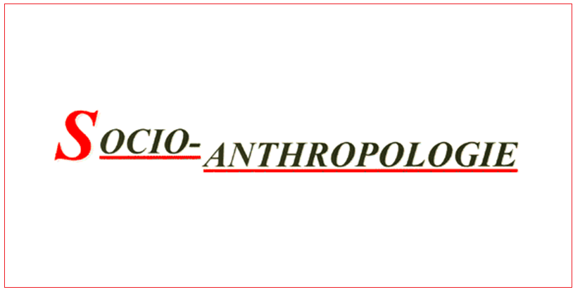 RevueSocioAnthropologie.PNG